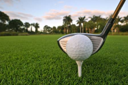 golf ball with driver behind it and palm trees in the background